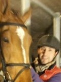 nice gay some lke my life  and love too ride my horses  in the Swedish showjumping rider
