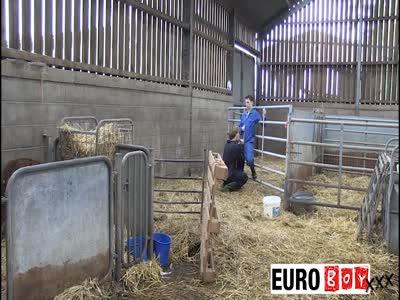 Farm Boys 1