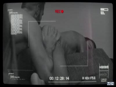 Sex Lies And Surveilla