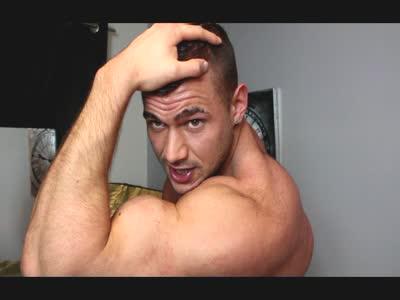 One True Alpha Male