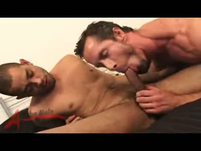 Rocco Banks And Albert