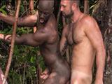 gay porn Lords Of The Jungle - Part 6 || Collin lets Jay service him turns him over and fucks him silly