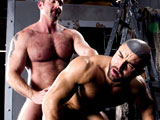 gay porn Alpha - Part 4 || Muscular men satisfy each other with sixty nine and anal sex