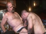 gay porn Furry Fun In The Bar || Watch This and Other Hot Movies on Bearboxxx!<br />