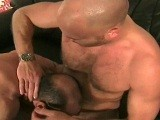 Gay Porn from GermanCumPigz - Exciting-Last-Shot