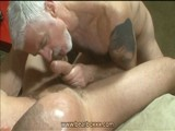 Gay Porn from BearBoxxx - Hot-Daddy-Bear-Blowjob