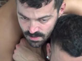 gay porn Wolf Pup Cherry Pop || Grrrrrrr! Do you like hot hairy little wolves? If you do, youre gonna LOVE this video.