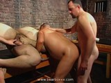 Gay Porn from BearBoxxx - Bear-Party-Part-Iii