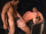Beasts with monster cocks fuck hard till their cum explodes.
