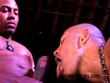 gay porn Black Cock Audition || Watch the Entire Movie At Blackbreeders