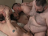 gay porn Bear And Chub Orgy || Five Guys Have a Suck and Fuck Bareback Orgy.