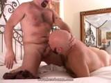 Gay Porn from BearBoxxx - Ass-Furry-Bear-Fun