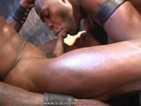 gay porn Love Sucking Black Cock || Watch the Entire Movie At Blackbreeders