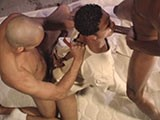 gay porn Used And Bred || Sebastian's Studios Specializes In Gay (of Course), Bareback, Ass Breeding, Hot Blowjobs, Cum Swallowing, Orgy, Gangbang, Hot Studs, Hot Twinks, Real Amateur Videos, No Fake Crap, and a Hell of a Lot More. After You've Enjoyed This Complimentary Video, Be Sure to Take a Minute and See What Sebastian's Studios Is Up To.