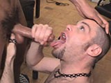 Gay Porn from sebastiansstudios - Swallowing-Jizz