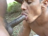Gay Porn from WankOffWorld - Big-Cocks-And-Big-Muscles