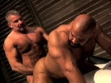 gay porn Reserection || Over an Hour of Five Furry Muscle Bears!
