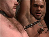 gay porn Van Trenton Damien And || For this live show we have Brock Avery and Damien Moreau submitting to Trenton Ducati alongside Van Darkholme. Brock and Damien are bound and blindfolded, trying to get their clothes off while Van beats them with the crop. Once their clothes are off, Van gives them their slave numbers, 215 & 956. Both subs are shoved to their knees and made to swallow Trenton's huge cock before having their hands tied above their head. Van and Trenton administer a vicious flog from front to back before having their nipples clamped and tormented with the zapper. Bent over 215's back, 956 is held down as he takes every inch of Trenton's cock up his ass. Both subs have their legs tied back, with a zipper of clothespins down their thighs. Trenton plows their holes in a pile driver before Van rips the zipper from their skin. To end the show, Trenton blows his load all over 215 and 956's faces & has them suck his cock clean.