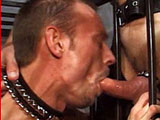"gay sex porn Dungeon Pigs Part Three || Oh damn, DaddyRaunch.com is back with a whole lot of hole and bears to fuck 'em good. Caged and ready to serve, the first boy even ""cums"" with an extra talent, holding his daddy's cigar. As his ass is plowed and his ""cage rattled,"" he's brought out. Hearing his favorite words, ""spread those legs fucker,"" this sweaty bottom opens up fully on the fuck bench; looks like this ""benchwarmer"" is going to get the full treatment. ""Give it up boy,"" is all he needs to hear to show his daddy a great time. Picking out a toy for his boy, the top penetrates and palpates the boy's prostate until he blows all over his leather chaps. A nice furry, cum covered kiss is shared by the two, woof."