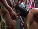 Gay Porn from Darkroom - The-Masked-Pig