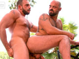 Gay Porn from TitanMen - In-Full-View-Scene-2-Johnny-And-Rogue