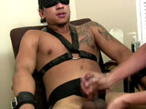 Gay Porn from boygusher - Bradley-Bondage-Part-2