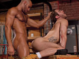 Gay Porn from falconstudios - Shawn-Wolfe-And-Sean-Zevran