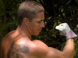 "gay porn Cocky Glenn Is Back || Cocky Glenn is Back!: 10"" Monster Cock Jersey Shore Gardener Sprays Loads and Pees in Hawaii!"