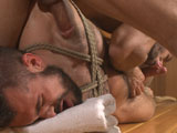 gay porn Aarin Asker || Stud looking for action in the showers gets his fill, ending up in tight ropes and a fist in his ass.