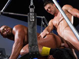 Gay Porn from HotHouse - Ass-Friends