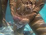 Underwater Cumshot