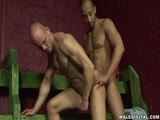 Male Digital Presents Skinhead Fuckdown - Scene 1