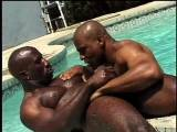Gag on it, boys. Here he is in all his glory: 13 mouth-stuffing inches of that chocolate bar of love, Bam. Also features bad-mouthed bodybuilder bad boy Bobby Blake pumping his piston poolside.