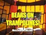Bears On Trampolines 2! || 