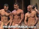 This five man orgy brings together the awesome star power of studs like Wilfred Knight, Damien Crosse, Francesco DMacho, Steve Cruz, and Angelo Marconi! The best part is, you'll feel like you're a part of the group-sex action with all the POV (point-of-view) camera work that adds a raw quality to the sweaty gangbang action.