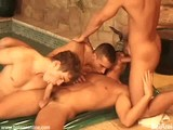 gay porn Swimming Pool Orgy || Swimming Pool Orgy