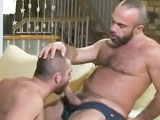 Real-life hairy lovers Albert and Bruno share one of their hot suck and fuck sessions with us. Albert takes charge in this video and fucks his lover's ass. Albert has only bottomed until now, but shows he's a skilled top man, too. He sprays his lover with a huge load of spunk!