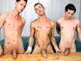 3 hot porn stars ashton hardwell, jesy karson & sascha vistos compares their huge cock and jerkoffs in a fleshjack.