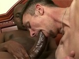 A very horny white gay guy stuffs his mouth with a long and very hard black dick