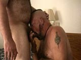 gay porn Sucking Cock And Getti || Two Hot Hand Hairy Mature Men Sucking Cock and Jerking Off as They Enjoy Each Others Company In the Bedroom. We Love Watching Hairy Daddies Having Fun and Playing With Their Meat.