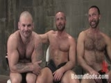 Van has his hands full in the dungeon with three dirty pigs, Tober Brandt, Kurt Weber, and Xavier St-Jude. He ties them up and lightheartedly plays with them. Van flogs them a bit, but finds them immune to the flogger's meager sting. He then pulls out the cattle prod and the laughing stops. Van still has some animosity towards Tober, so he lets the other boys free to use and abuse him. Tober endures bondage suspension, face-fucking and a hard ass-fucking.