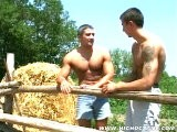 <br />these Country Boys Sure Know How to Fuck Like a Bunch of Animals. Imre and Bertalan Will Have a Saddle on Them Soon If They're Not Careful. Watch the Ripped Studs Suck and Fuck Amongst the Hay Out In the Open Air. What a Pair of Farmyard Hotties.