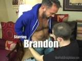 gay porn Christian's Hairy Fant || Christian loves hairy guys! Actually he likes all types but hairy guys get a special place in his lustful fantasies. Enter Brandon, one of the hairiest guys we know. They made a great pair because Brandon, just like Christian has a kinky edge to him. Christian got his mouth all over Brandon relishing all the body hair especially Brandon's hairy ass and hard, hairy cock! He really got Brandon to blow a geyser! Christian's face got splattered with Brandon's cum--from his beard all the way up to his hairline!