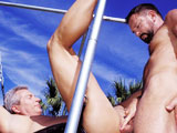 gay porn Fisting Cum Swapping Daddies || The 2 raunchiest Daddies in history, Will West and Ray Butler, get together for some extreme outdoor fucking. They begin by deep throating each other's juicy dicks until= Butler gets in a sling. Will plays with his hole as his long dick stands at full attention, then fists and fucks the hell out of Butler, all in extreme close-up until he cums in Butlers asshole. They finish by licking each others cum covered cocks clean.