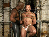 gay porn Alessio Romero And Race Cooper || Race Cooper finds Alessio Romero tied up and ready to be used and abused. Race tests his bondage slave's limits. Alessio endures the hard corporal, metal weights on the balls, the zapper, upside down suspension, and a slamming bondage fuck.