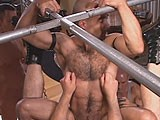 gay porn Sling Kings || Muscled Up Ramon Lopez Hops on Top of Hairy Bear Boy, Who's Sitting In the Sling, and Rides His Long, Thick Meat.<br />