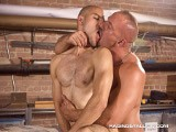 Samuel and Damien Find Themselves In the Woodshop, More Interested In Working Each Other. They Rub and Lick All Over Each Other's Ripped Bodies Until Slim Latino Damien Locks His Lips Around Beefy Samuel's Wood. Samuel Wants a Taste Too, so He Slurps At Damien's Cock and Then Takes It All the Way Down His Throat. the Intensity Grows and These Studs Are Fucking Fast, Damien Bending Over the Work Table and Samuel Answers With Hard Thrusts Repeatedly Nailing Damien, Who Milks a Stream of Cum Out of His Stiff Woody. Samuel Answers by Squeezing a Load Onto Damien's Cock and Balls.