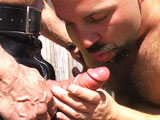 gay porn Tony Fucks Kodah || This episode opens somewhere at an undisclosed address in Beverly Hills as we find Anthony DeAngelo come across a trespasser while prowling the grounds of his estate. Tony spies on his prey and within moments moves in to mark his territory. He strips out of his leather and force feeds his massive curvy rod down the throat of Kodah who lubes it up with slimy throat juices in preparation for taking the cock up his hairy hole. And with one quick plunge, Tony is in place and taking ownership of Kodah who's begging for more. And more he gets as the two fuck and fuck until Tony spews his massive load on Kodah's hairy chest causing Kodah to spill his ample load.