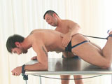 gay porn He Gets Hogtied For Hot Action || This stud gets all strapped up for some man to man action!