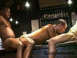 Gay Porn from BlackBreeders - Bar-Humping